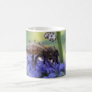 Néctar de consumición de la abeja taza básica blanca