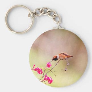 Néctar de la flor del colibrí que sorbe que se llavero