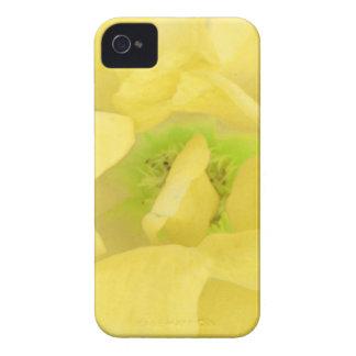 Néctar floral del oro amarillo iPhone 4 cárcasas