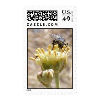 Nectar Gathering Fly Stamp