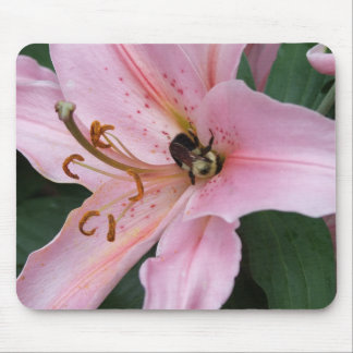 Nectar of the Orient Mouse Pad