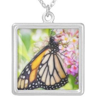 Néctar que sorbe de la mariposa de monarca colgante cuadrado