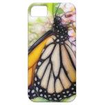 Néctar que sorbe de la mariposa de monarca iPhone 5 cobertura