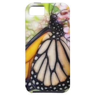 Néctar que sorbe de la mariposa de monarca funda para iPhone SE/5/5s