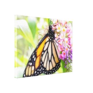 Néctar que sorbe de la mariposa de monarca impresiones en lienzo estiradas