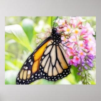 Néctar que sorbe de la mariposa de monarca impresiones
