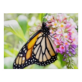 Néctar que sorbe de la mariposa de monarca poster