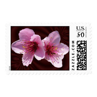 Nectarine Blossoms ~ stamps