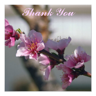 necterine wedding thank you card