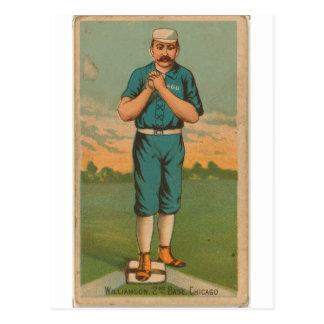 Ned Williamson, medias del blanco de Chicago Tarjetas Postales