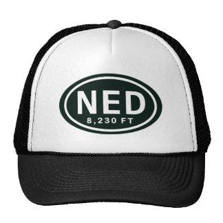 Nederland CO 8,230 FT Elevation NED Hat