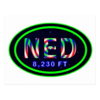 Nederland Colorado 8,230 FT NED Rocky Mountain Postcard