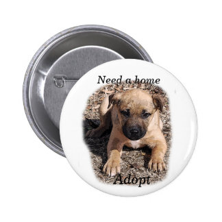 Need a home-Bogie Puppy Pinback Buttons