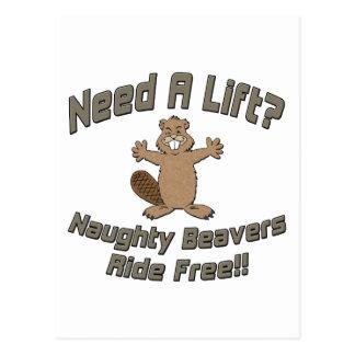 Need A Lift Naughty Beavers Ride Free Postcard