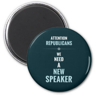 Need A New Speaker Magnet