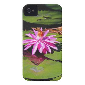 Need Nothing More iPhone 4 Case