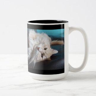 need shave Cat comedy Mug