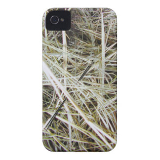 """""""needle in a haystack"""" iPhone4 Case-Mate ID Case iPhone 4 Case"""