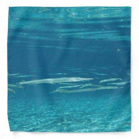 Needlefish Bandana