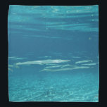 "Needlefish Bandana<br><div class=""desc"">A school of Needlefish in a crystal clear Florida spring.</div>"