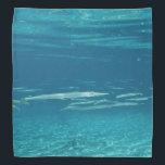 "Needlefish Bandana<br><div class=""desc"">A school of Needlefish in a crystal clear Florida spring.</div>"