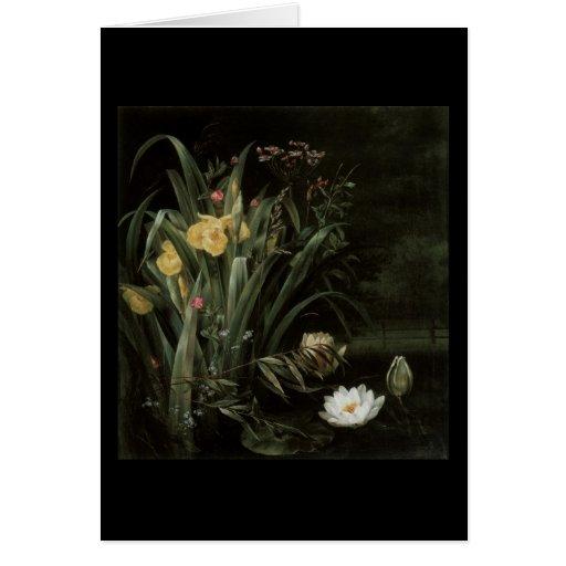 Neergard Lily Pond Greeting Cards