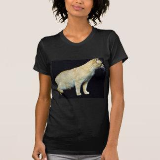 Nefertiti T-shirts