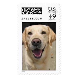 Neffa Postage Stamps