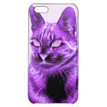 Negativa púrpura del gato