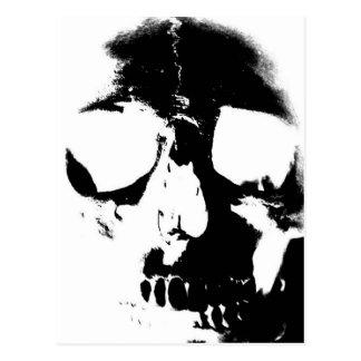Negative Black & White Skull Postcard