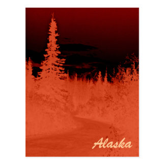 Negative Image Alaskan Forest in the Denali Range Postcard