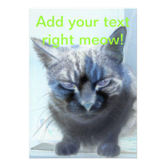 Negative Kitty Cat Personalized Announcements