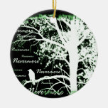 Negative Night Vision Nevermore Raven Silhouette Double-Sided Ceramic Round Christmas Ornament