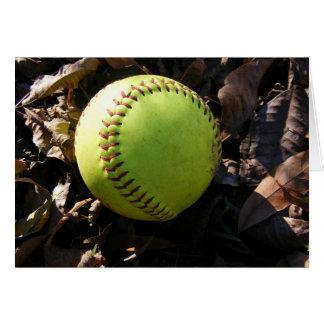 Neglected Softball Card