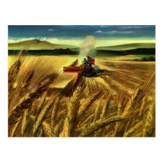 Negocio agrícola del vintage, trigo que cultiva la postal