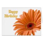 Negocio anaranjado de la flor de la tarjeta de cum