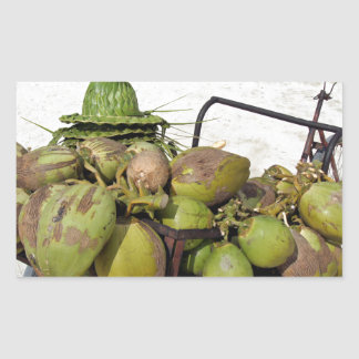 negocio del coco rectangular pegatina