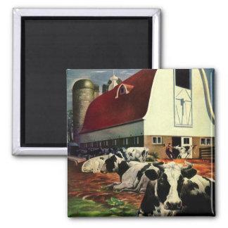 Negocio del vintage, vacas de leche de la granja imán para frigorífico