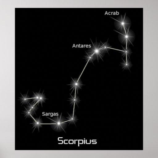 Negocio del zodiaco del escorpión de la constelaci poster