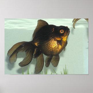 Negro-amarre la cartera del Goldfish Póster