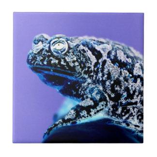 Negro azul invertido foto del sapo de la rana azulejo cuadrado pequeño