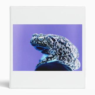 Negro azul invertido foto del sapo de la rana