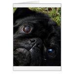 negro-barro amasado eyes.png tarjeta de felicitación
