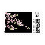 Negro con la flor de cerezo rosada y verde Sakura