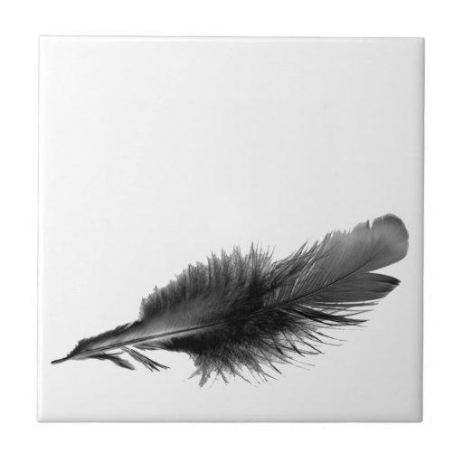 Negro de la pluma azulejo cuadrado pequeño