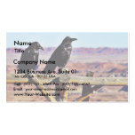 Negro de los pájaros de los cuervos de los cuervos plantillas de tarjetas personales