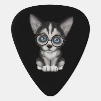 Negro de los vidrios del perrito lindo del husky uñeta de guitarra