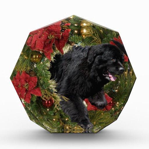 Negro de Newf de la guirnalda del navidad