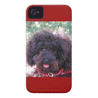 Negro del caniche de juguete iPhone 4 Case-Mate protector