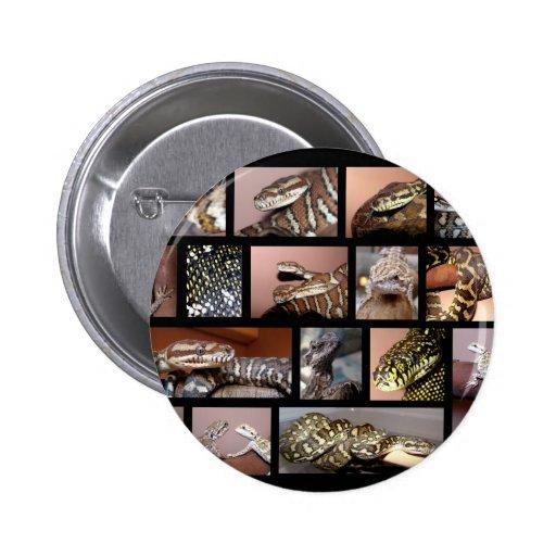 Negro del collage del reptil de Steph Pin